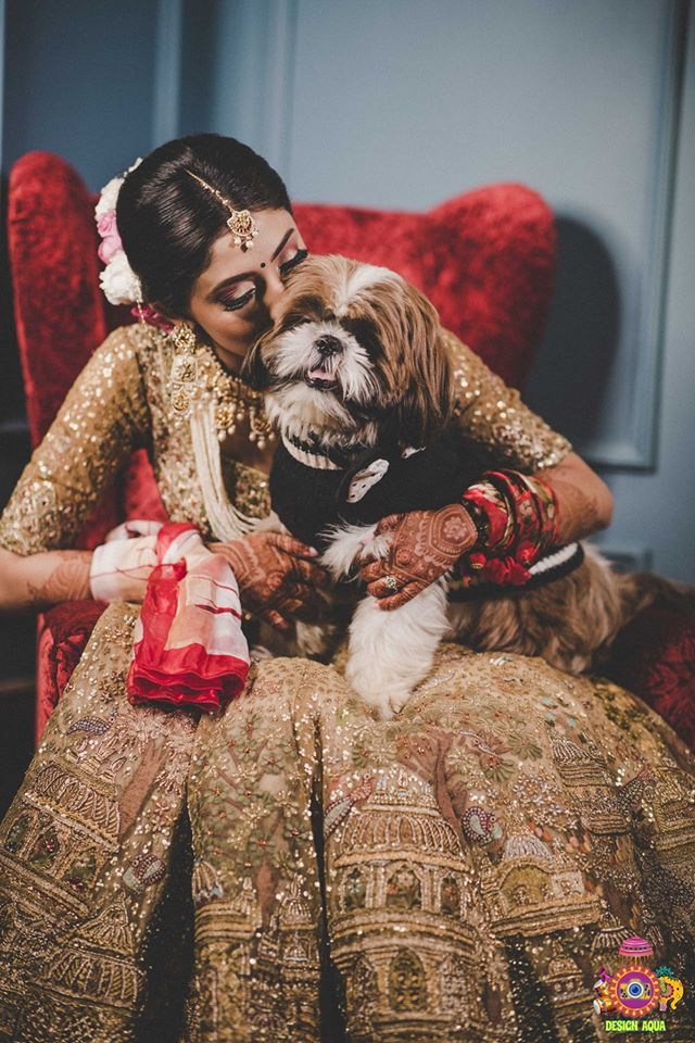 A Beautiful Bride in Gold Loving & Kissing Her Pet Dog
