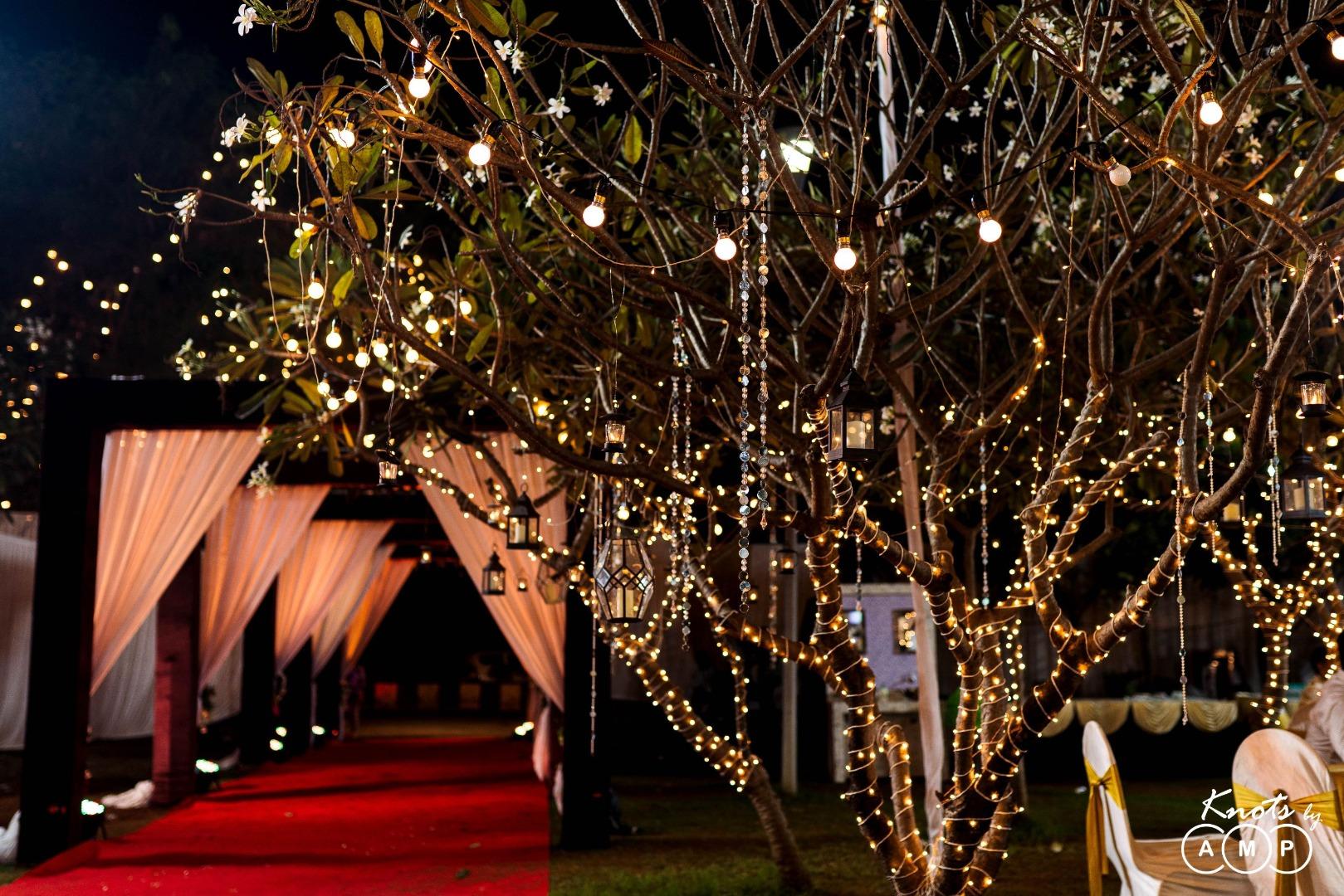 Fairy Light Decorated Tree and Draped Entrance Decor