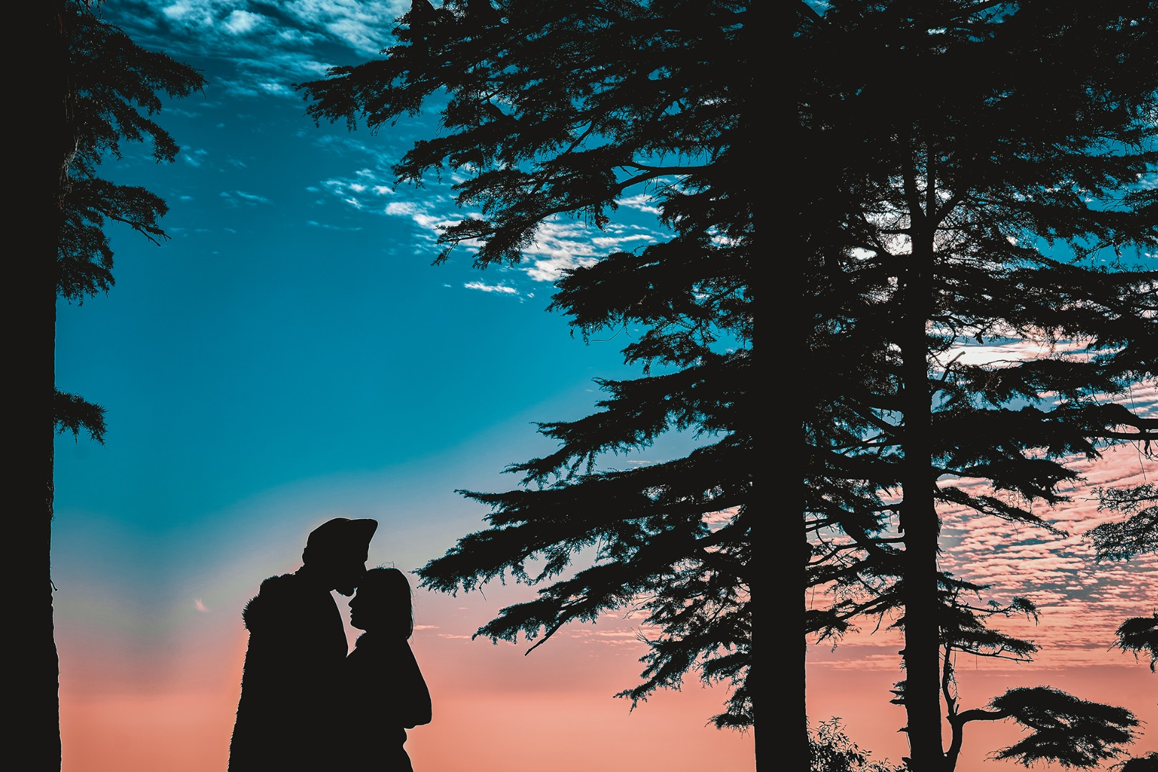 silhouette photograph of the couple