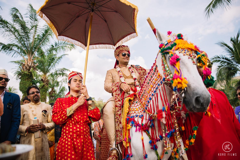 Indian Groom Baraat PIcture