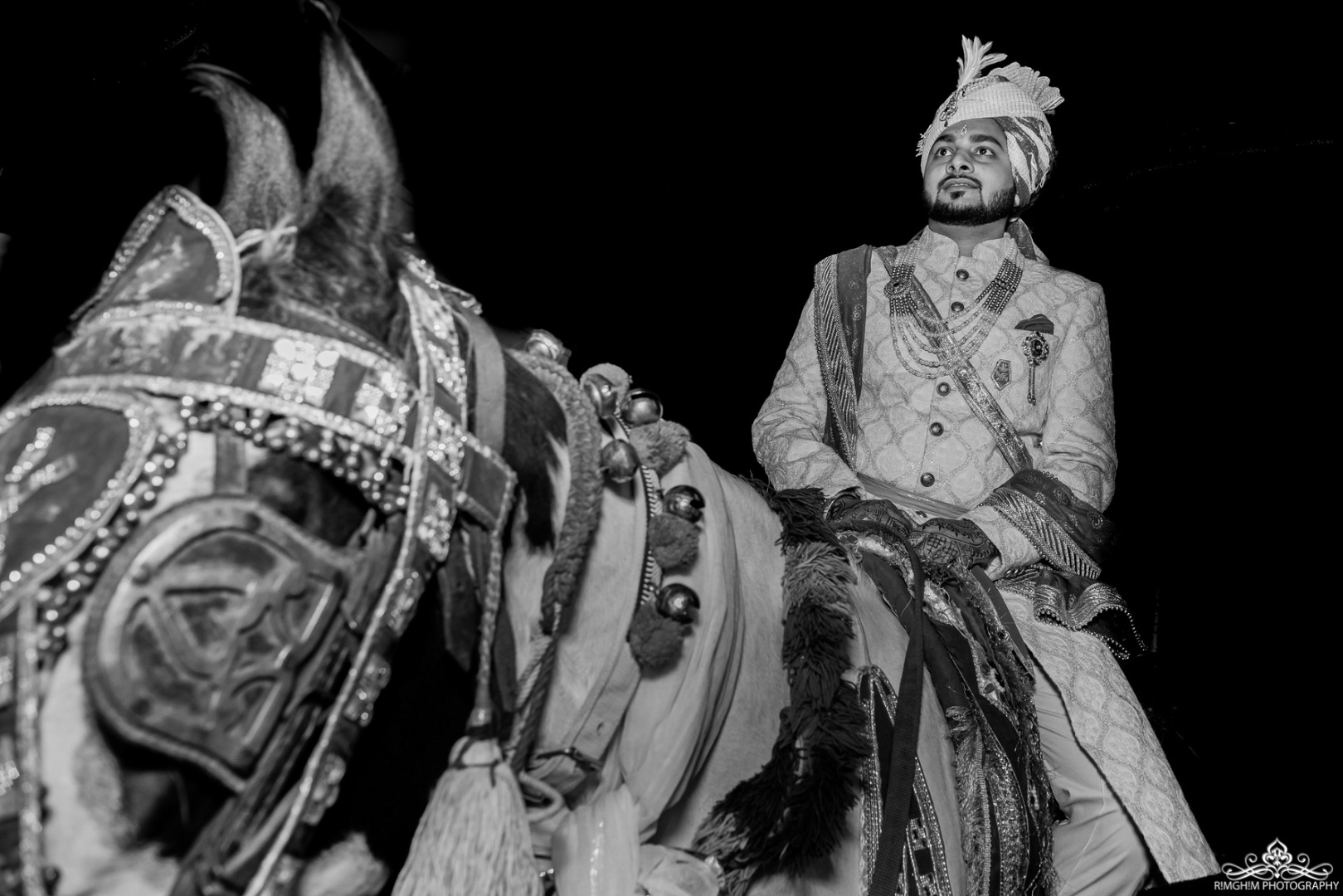 Classy Groom on White Horse Image