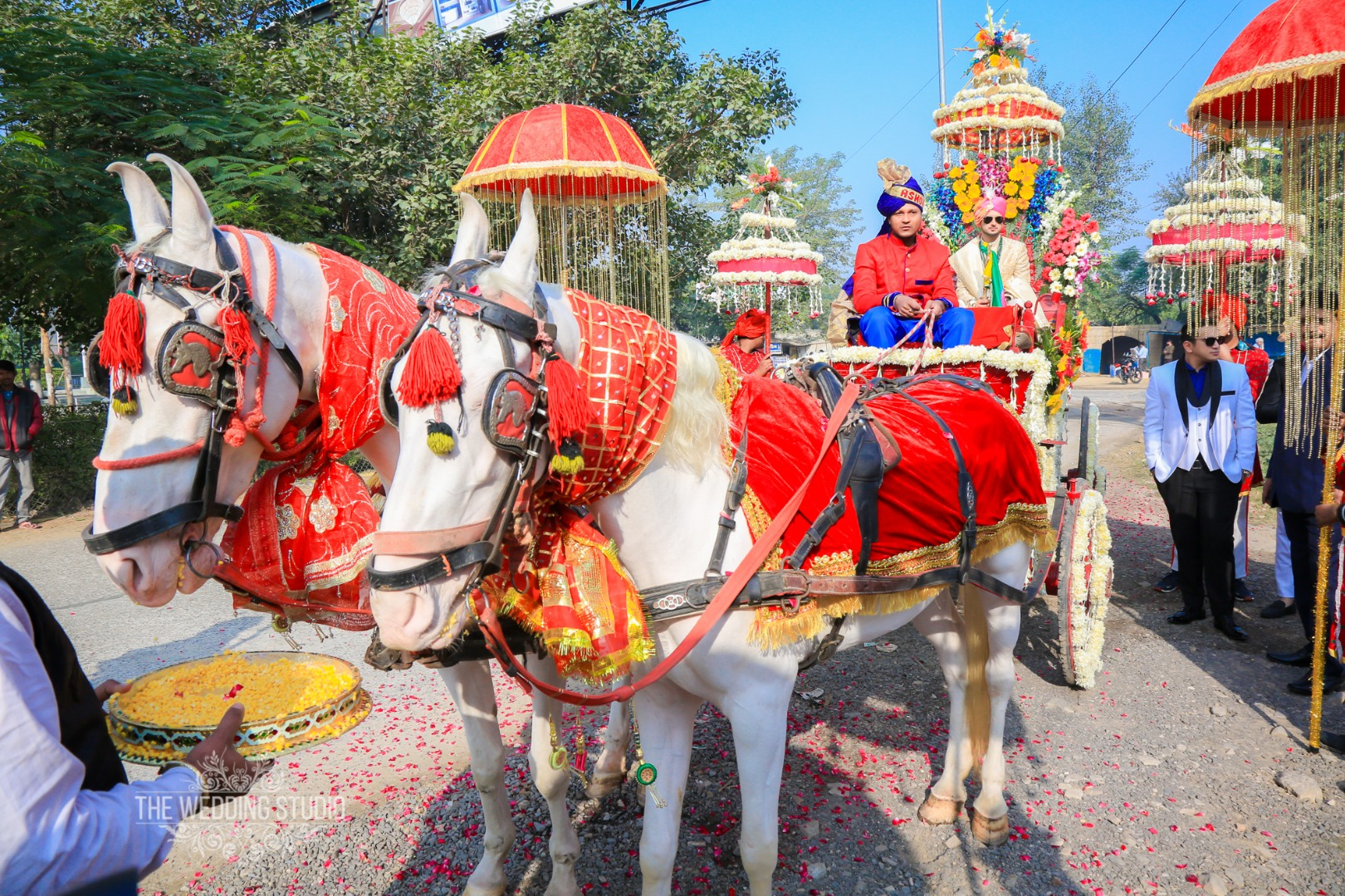 Indian Groom Entry on Horse