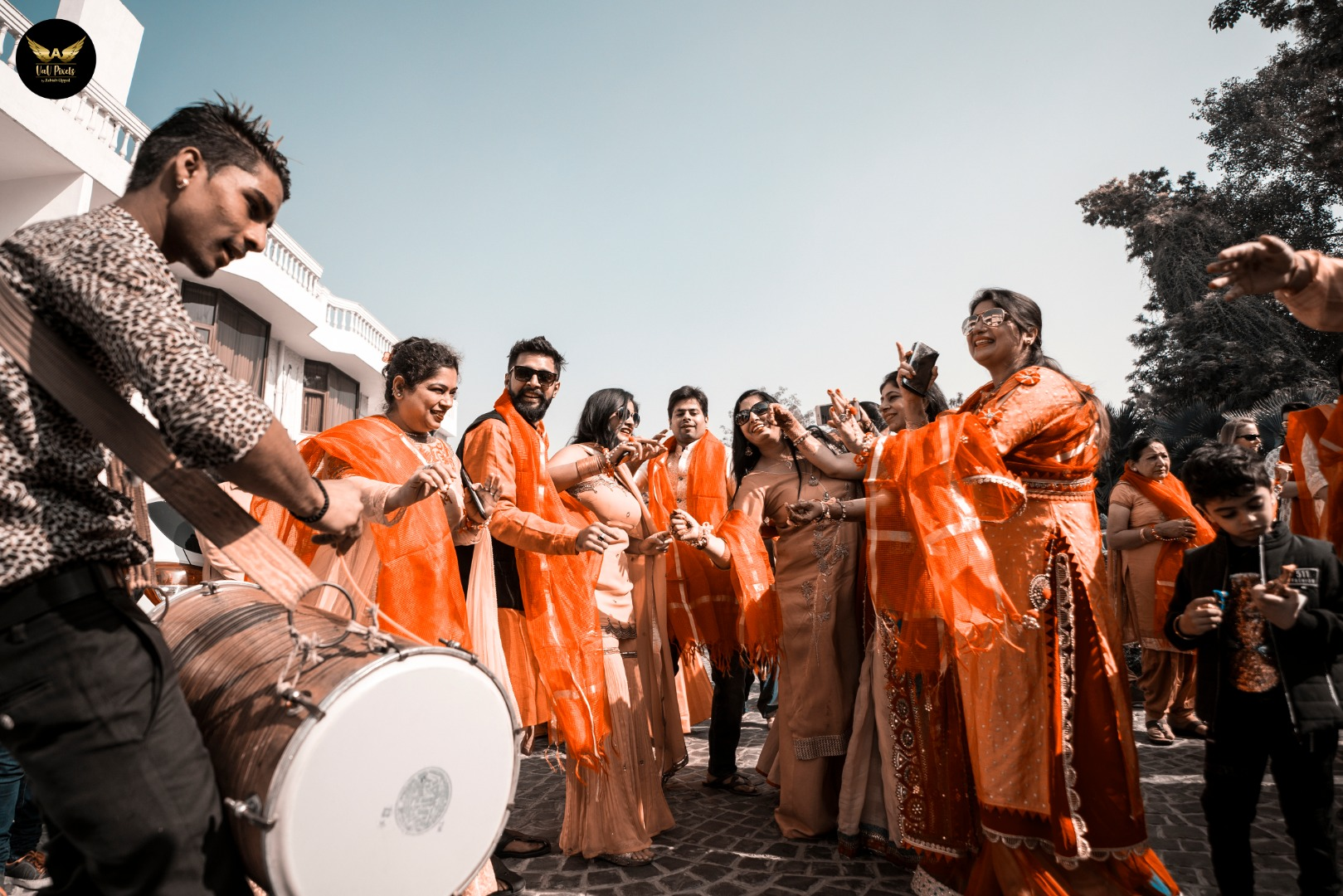 Indian Wedding Baraat Dance