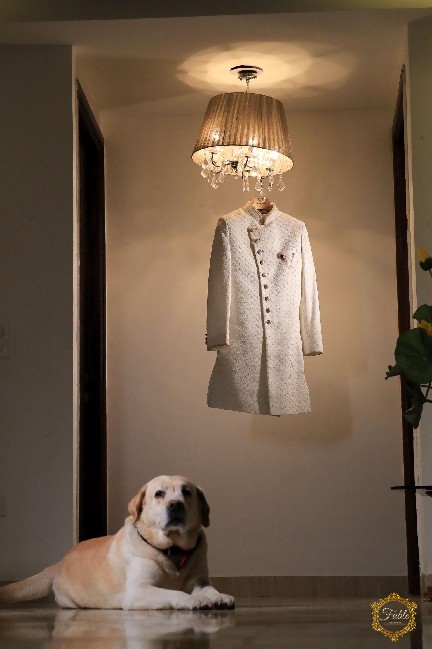 groom's sherwani and his dog