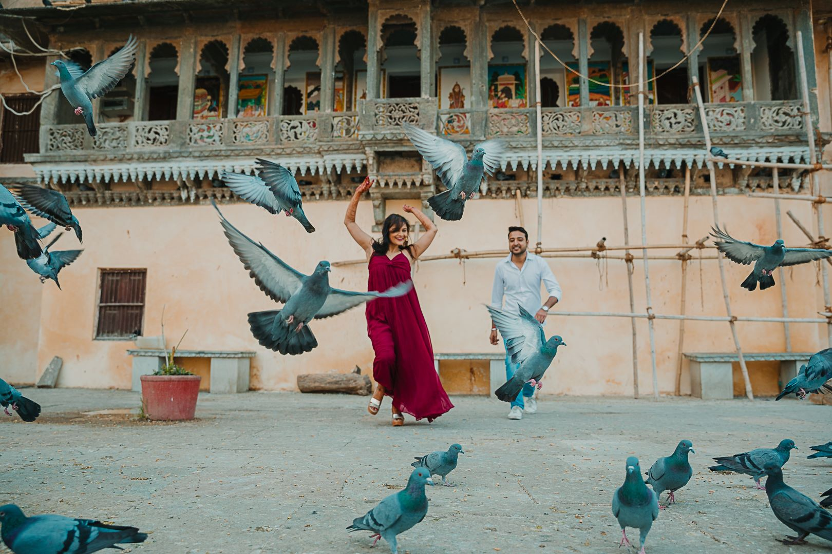 pre wedding shoot in udaipur with pigeons