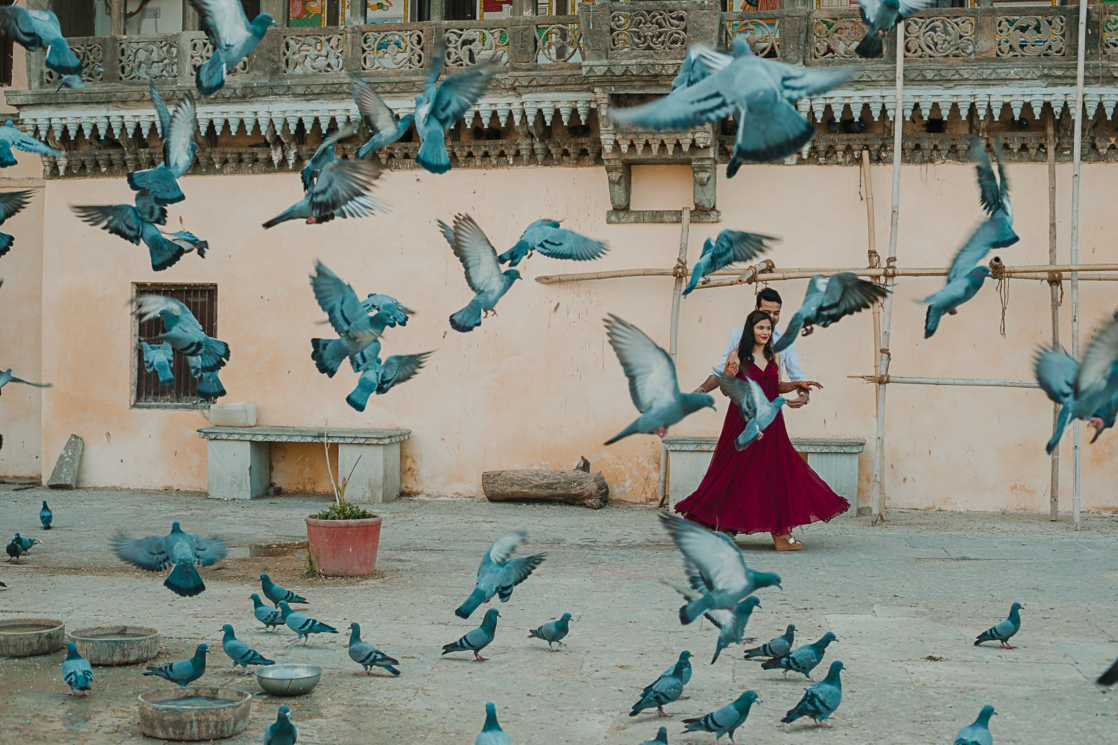 pre wedding shoot with pigeons