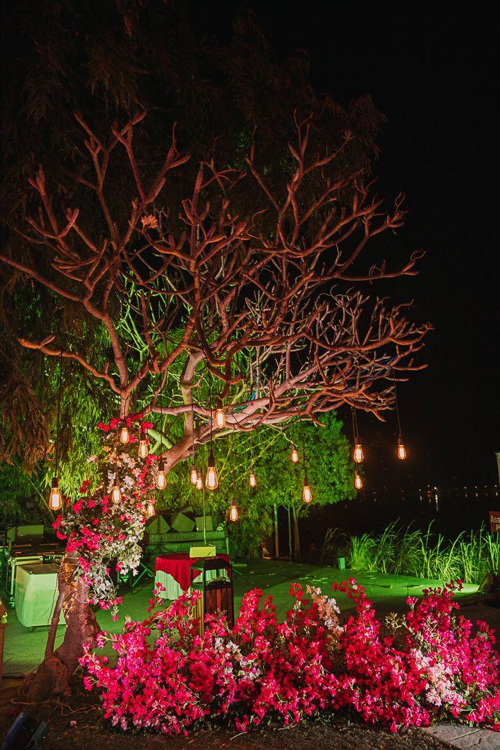 red rose night decor